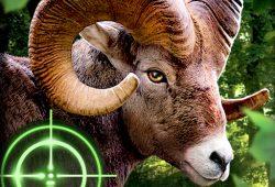 Download Wild Hunter 3D v1.0.6 Mod Apk